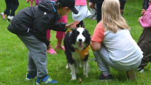 En svartvit hund blir klappad av två barn.