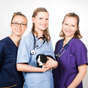 Kolme eläinlääkärikandia 2018