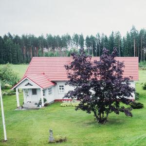 Pihamaa jonka laidoilla kolme rakennusta