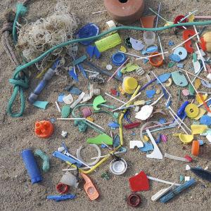 Plastskräp på en sandstrand i Portugal. En stor del av plastavfallet är pinnar från bomullspinnar.