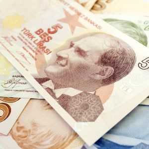 Turkiska lira, sedlar.
