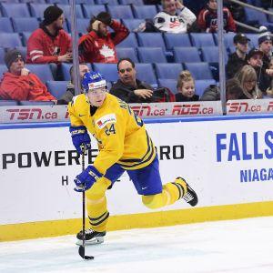 Lias Andersson, svensk JVM-spelare.
