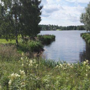 Här är platsen för minikraftverket vid Djupsjön i Kronoby, om det nånsin byggs