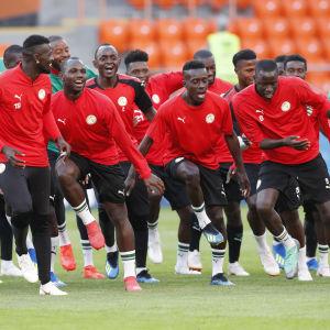 Senegal tränar.