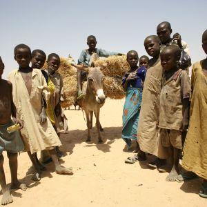 Oxfams vattenprojekt i Tchad