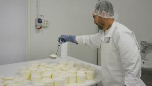 Ostmästare Thierry Jung tillverkar crotin-ost vid Fiskarsin Juustola