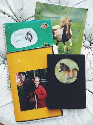 Ratsastuspäiväkirjoja