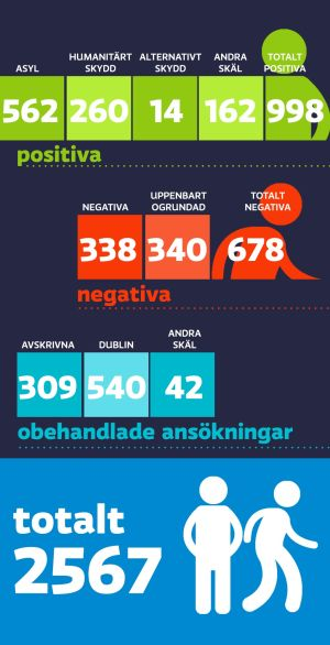asyl statistik