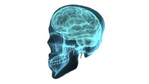 Päihteet vaikuttavat aivoihin