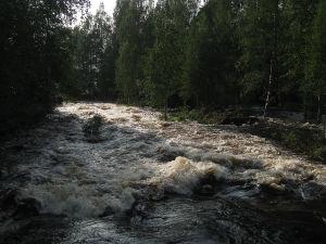 Heinäveden Palokissa koski pauhaa vapaana.