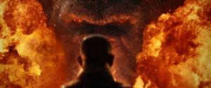 Närbild på Kongs aniskte i ett eldhav.