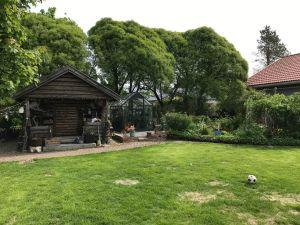Lummig trägdård med växthus och föråd.