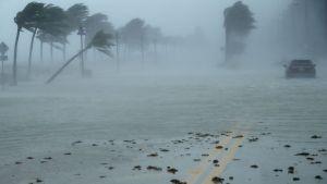 Orkanen Irma drar in över Fort Lauderdale, Florida den 10 september 2017.
