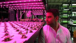 BBC:n kolmiosainen sarja tutustuttaa ruoantuotannon uusiin keksintöihin.
