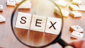 """Bokstavsblock som bildar ordet """"sex""""."""