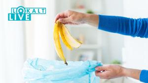 Hand som håller i bananskal ovanför soppåse