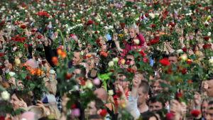 Ett människohav som står och håller upp rosor i luften.