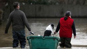 ett par drar en hund i en båt. De har vatten upp till knäna.