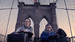 Kaksi teräväpäistä rouvaa, Shirley ja Hinda, hyppäävät mopojensa selkään. He lähtevät selvittämään talouskasvun hintaa.