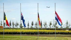 Flaggor på halvstång vid monumentet som hedrar minnet av passagerarna på MH17.