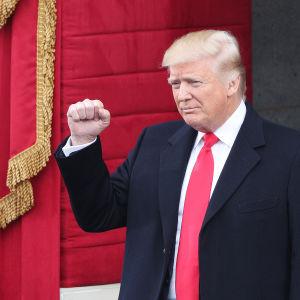 Donald Trump med knytnäven höjd anländer till Kapitolium där han svärs in som USA:s nye president.