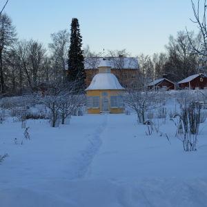 Aspegrens trädgård i vinterskrud.