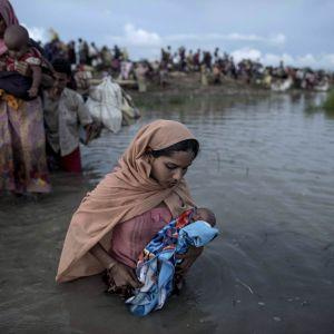 Rohingyer flyr från Burma till Bangladesh över floden Naf.