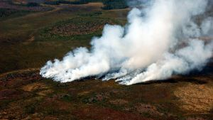 Skogsbrand i Sodankylä