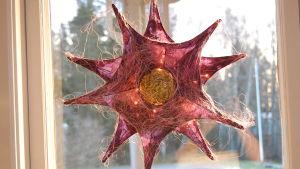 Rosa stjärndekoration som hänger i Strömsö villans fönster