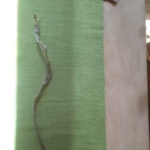 Ulla-Rita hittade detta ormskinn förra veckan vid en vedtrave i Raseborg. Kan man utgående från skinnet artbestämma ormen?