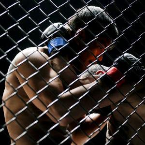 MMA-fajters.