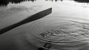 Airosta tippuu pisaroita veden pinnalle.