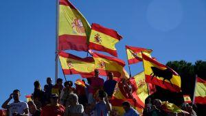 Människor demonstrerar mot ett självständigt Katalonien i Madrid.