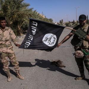 Syrisk militär håller upp en flagga som tillhört Islamiska staten.