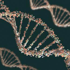En DNA -sekvens.
