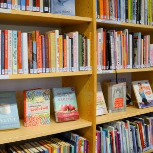 Bibliotekshylla.