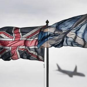 Storbritanniens unionsflagga och Skottlands flagga vajar i vinden.
