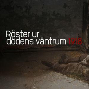 """Promobild för Radioteaterns installation """"Röster ur dödens väntrum"""" på Sveaborg. Halvt genomskinlig fånge sitter i cell och titeln skrivet på fotot."""