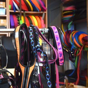 Massor av koppel och hundhalsband i olika färger, former och med olika mönster. I bakgrunden syns material som halsbanden görs av.