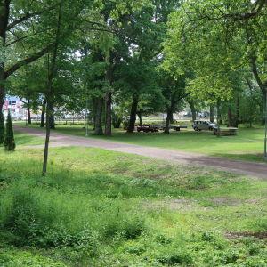 En grön park med en sandväg i mitten.
