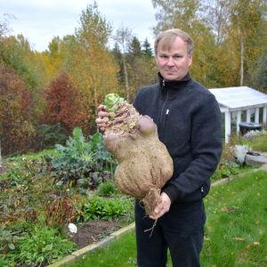 Mika Tiilikäinen odlade i år Finlands största kålrot på 16,46 kg.
