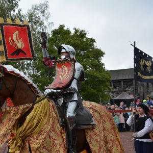 Häst och riddare på tornerspel.