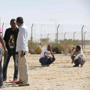 Afrikanska migranter i Israel nära den egyptiska gränsen 4.2.2018