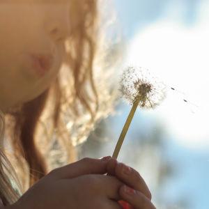 Ett barn håller i en maskros.