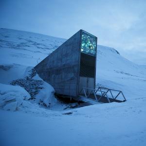 """Den så kallade """"domedagsbanken"""" på Svalbard lagrar frön från 4 000 olika växter."""