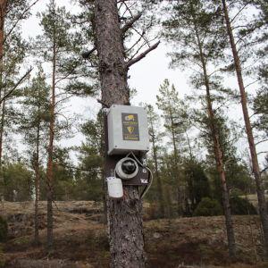 En övervakningskamera.