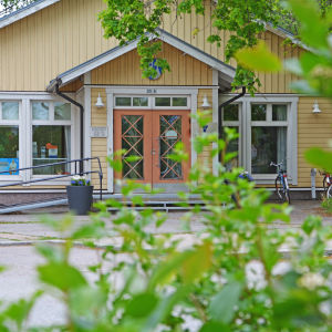 Hus bakom gröna kvistar