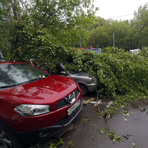 Stormskador i Moskva 29.5.2017