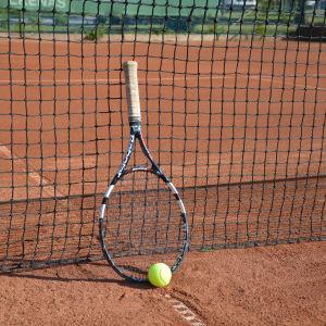 Tennisracket och -boll lutade mot ett nät.
