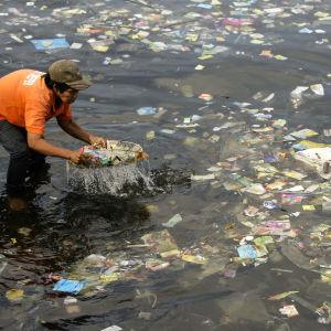 En filippinsk man samlar upp plastavfall ur havet.